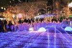 乙訓地域の竹材で作ったオブジェを彩るイルミネーション(京都府長岡京市)