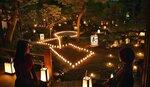 ろうそくの明かりで幻想的な雰囲気に浮かび上がる庭園(10日午後6時6分、京都市右京区・東林院)