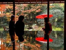 鮮やかに色づいた庭園の紅葉が座卓に映り込む(大津市坂本5丁目・旧竹林院)