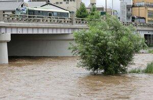 濁流となった鴨川。中州の立木も水につかった(7月6日午後4時50分、京都市北区の北大路橋付近)