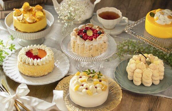 季節の冷凍ケーキ便