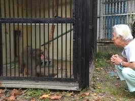 みわが1匹で飼育されることになった園舎(福知山市猪崎・市動物園)