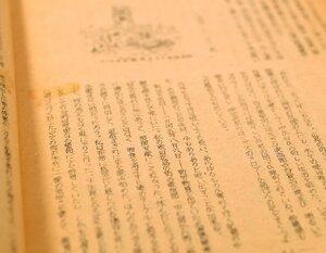 原爆体験記の編集の中心を担った広島出身の文学部生が書いた手記