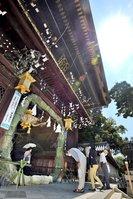 例年より早く設置された大茅の輪をくぐる参拝者(2021年6月10日午前9時59分、京都市上京区・北野天満宮)