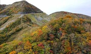 山の斜面が赤や黄色に色づいた伊吹山(28日午前11時7分、滋賀、岐阜県境)=小型無人機から