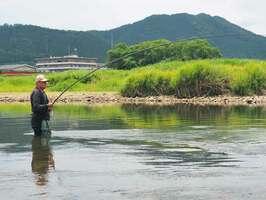 由良川でアユを狙う釣り人。シーズン中にもかかわらず釣り人の姿は少ない(11日、京都府綾部市味方町)