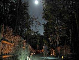 「かぐやの夕べ」でライトアップされた竹の径(京都府向日市寺戸町)
