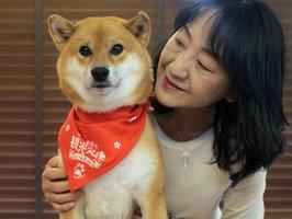 動物愛護支援に取り組む2代目モデル犬「ジェームスjr.」と飼い主の高谷さん