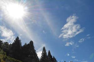 強い日差しで京都や滋賀は記録的な暑さとなった(10日午後2時40分、京都市西京区)