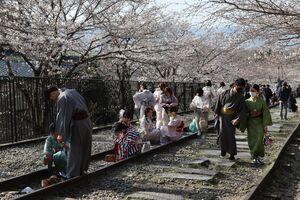 大勢の着物姿の若者が訪れている蹴上インクライン(京都市左京区)