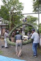 初めて作り上げた茅の輪を支柱につるす総代ら(亀岡市篠町・桑田神社)