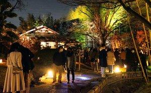 木々や茶室がライトアップされ幻想的な雰囲気が漂う松花堂庭園(京都府八幡市八幡)