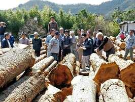 良材が競り落とされた八木原木市場の初競り(南丹市八木町)