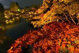 ライトアップされた永観堂の放生池(京都市左京区)