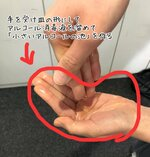 みほとけさんが投稿したアルコール消毒液の使い方の1枚目(ツイッターより)