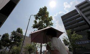 強い日差しに照らされ、猛暑日となった京都市内(20日午後2時2分、京都市中京区)