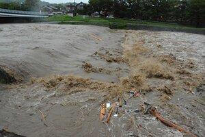 濁流となった鴨川(8日午前6時、京都市北区の西賀茂橋付近)