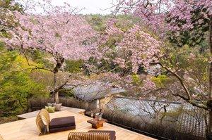 星のや京都が期間限定でオープンする「さくらテラス」