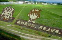 イナズマロックフェスの公式キャラ「タボくん」とロゴマークなどが描かれた田んぼアート(甲賀市水口町)