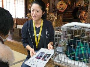 犬猫の譲渡会で来場者に説明する大西結衣さん。活動の理念に賛同する一念寺で定期的に開かれ、殺処分の実態を伝える展示や関連本なども充実する(2月23日、下京区)