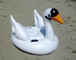 子どもが乗って沖に流された動物型の浮具の一つ(第8管区海上保安本部提供)