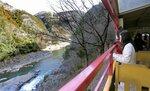 運行が始まったトロッコ列車からの景色を楽しむ観光客(1日午前9時22分、京都府亀岡市)
