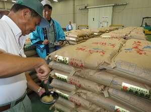 新米「ハナエチゼン」の出荷前に行われた米粒の品質検査(高島市今津町日置前・JA今津町総合営農センター)