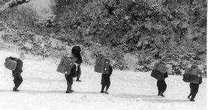 1950年ごろ、鞍馬の北にある花背峠で撮影された炭運びの様子(中村名誉教授提供)