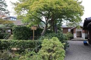 京都市が茶室「有待庵」の移築先の優先候補に固めた「岩倉具視幽棲旧宅」(左京区)