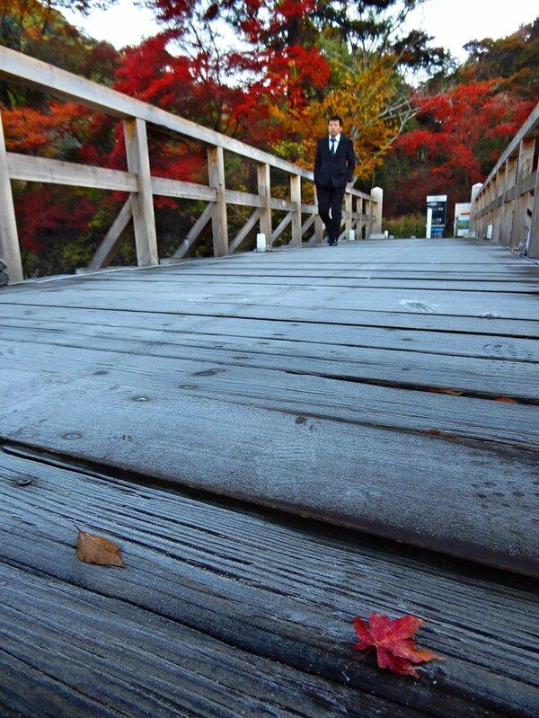 今季一番の冷え込みで霜に覆われた木橋(15日午前7時20分、京都市左京区八瀬野瀬町)