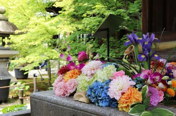 青モミジに映える花手水。オンライン配信でも風景を楽しめる(京都市東山区・東福寺塔頭勝林寺)