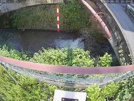 簡易型河川監視カメラが撮影した京都市北区を流れる天神川の様子(京都府提供)