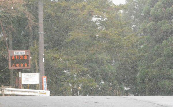 細かい雪が舞う花背峠(14日午後4時、京都市左京区)