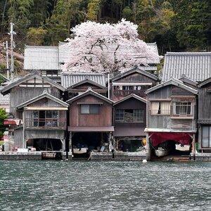 【資料写真】京都府伊根町の舟屋