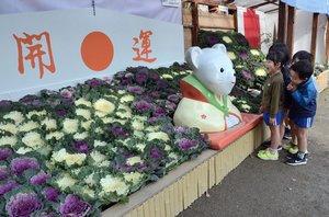 ハボタンと、えとの置物で飾られた境内(京都市南区・吉祥院天満宮)
