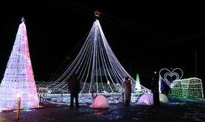 電飾が輝き、闇夜を鮮やかに彩るイルミネーション(京丹波町大朴)