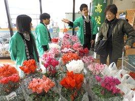 クリスマスや正月を彩る花々を販売する農芸高の生徒たち(亀岡市篠町・たわわ朝霧)