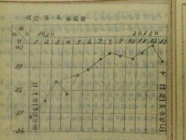 731部隊だった平澤正欣軍医によるペスト感染実験の博士論文。「さる」が死亡するまでの体温変化を記録したグラフ。人体実験だったとの指摘がある(国会図書館関西館所蔵)
