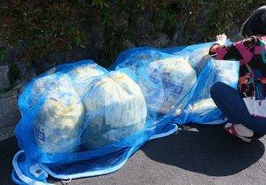 ネットの中にごみ袋を置く住民。4月中旬ごろから大型連休明けまで、ごみの量は普段の2倍近くあったという(京都市左京区)