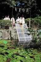 魚を池に放す神職たち。例年、放生行事は近くにある川で行っていた(八幡市八幡・放生池)