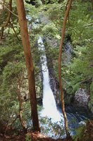 【資料写真】ごう音をとどかせて激しく流れ落ちる三の滝(2004年撮影、大津市葛川坊村)