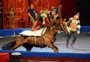 高速で周回する馬に飛び乗って観客を沸かせる団員(京都市北区・島津アリーナ京都)