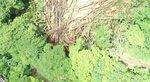 土砂災害が発生した時の様子。大量の倒木や土砂が線路を覆った(2020年7月8日、京都市左京区鞍馬二ノ瀬町)=叡山電鉄提供