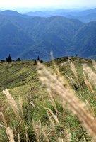 丹波高原の山並みを背景に秋風に揺れるススキ(大津市・武奈ケ岳山頂付近)
