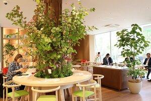 緑豊かなカフェ